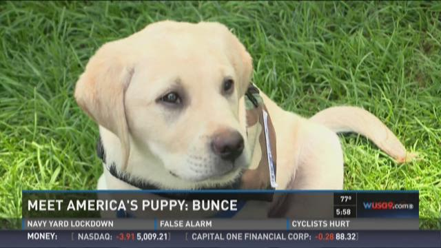Bunce visited WUSA9 on June 30th!