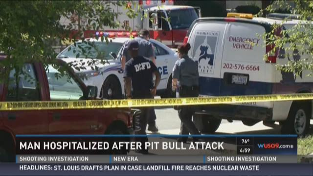 Man hospitalized after pit bull attack