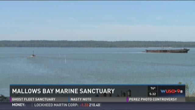 Mallows Bay Marine Sanctuary